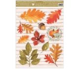 Okenné fólie bez lepidla jeseň tekvica, lístky 30 x 42 cm
