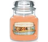 Yankee Candle Grilled Peaches & Vanilla - Grilované broskve a vanilka vonná svíčka Classic malá sklo 104 g
