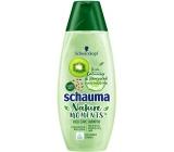 Schauma Nature Moments Kiwi, uhorka a konopné semienka šampón na vlasy 400 ml