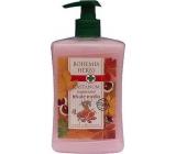 Bohemia Gifts & Cosmetics Castanum Extrakt z kaštanu koňského regenerační tekuté mýdlo 500 ml
