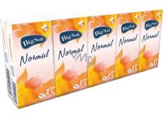 Big Soft Normal papierové vreckovky 2 vrstvové 10 x 10 kusov