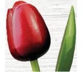 Bohemia Gifts Dřevěný tulipán červeno-bílý 34 cm