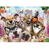 Prime3D Plagát Zvieracie - Selfie 39,5 x 29,5 cm