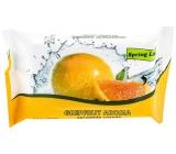 Doctor Wipes Spring Line Grapefruit vlhčené obrúsky 15 kusov