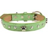 Tatrapet Obojok Kožený zelený zdobený s labkami 2,5 x 55 cm
