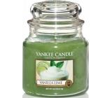 Yankee Candle Vanilla Lime - Vanilka s limetkou vonná sviečka Classic strednej sklo 411 g