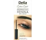 Delia Cosmetics Instant Eyebrown Tint farba na obočie 4.0 hnedá 6 ml
