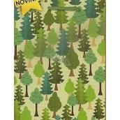 Nekupto Dárková papírová taška střední 23 x 18 x 10 cm Vánoční 1464 50 WBM
