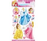 Room Decor Samolepky na zeď Disney Princezny 3D 40 x 29 cm