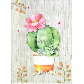Nekupto Darčeková Kraftová taška 29 x 22 x 10 cm Kaktus