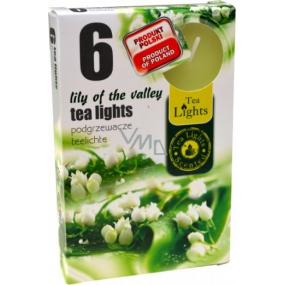 Tea Lights Lily of the valley s vůní konvalinek vonné čajové svíčky 6 kusů
