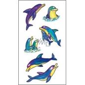 Tetování barevné delfíni 16,5 x 10,5 cm