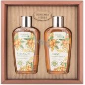Bohemia Gifts & Cosmetics Arganový olej sprchový gél 250 ml + šampón na vlasy 250 ml, kozmetická sada