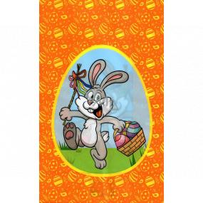 Nekupto Veľkonočný sáčok zajačik s košíkom 180 x 360 mm 004 01 NVE