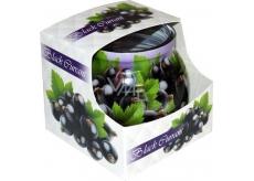 Admit Black Currant - Černý rybíz dekorativní aromatická svíčka ve skle 80 g