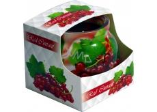 Admit Red Currant - Červené ríbezle dekoratívne aromatická sviečka v skle 80 g