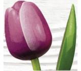 Bohemia Gifts & Cosmetics Dřevěný tulipán fialovo-bílý 34 cm