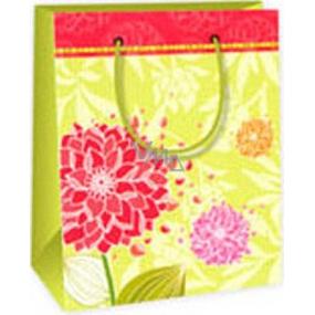 Ditipo Darčeková papierová taška 11,4 x 6,4 x 14,6 cm svetlo zelená červené kvety