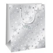 Ditipo Darčeková papierová taška Glitter šedá, hviezdy 18 x 10 x 22,7 cm QC