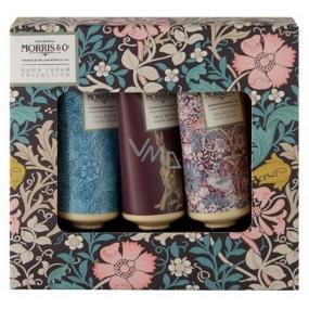 Heathcote & Ivory Pink Clay & Honeysuckle vyživujúci krém na ruky a nechty 3 x 30 ml kozmetická sada