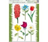 Room Decor Okenní fólie bez lepidla travička a květinky Typ 3 42 x 30 cm