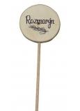 Bohemia Gifts Drevený zápich k bylinkám s potlačou - Rozmarín priemer kolieska je 5 - 8 cm