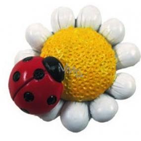 Magnetiek farebný matný Kvetinka