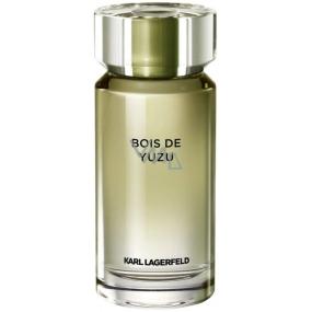 Karl Lagerfeld Bois de Yuzu toaletní voda pro muže 100 ml Tester