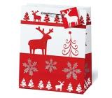 BSB Luxusní vánoční dárková papírová taška 23 x 19 x 9 cm Red & White VDT 334 - A5