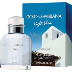 Dolce & Gabbana Light Blue Living Stromboli toaletná voda pre mužov 75 ml