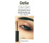 Delia Instant Eyebrown Tint farba na obočie 1.0 čierna 6 ml