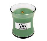 WoodWick White Willow Moss - Vrba a Mech vonná svíčka s dřevěným knotem a víčkem sklo malá 85 g