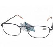 Berkeley Čítacie dioptrické okuliare +2,0 hnedé kov 1 kus MC2005