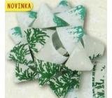 Nekupto Hviezdica strednej luxus vianočný, zelená, vetvičky 6,5 cm HV 210 50