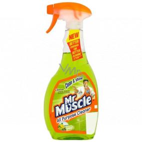 Mr. Muscle Clean & Shine Citrus Lime Okná a sklo čistiaci prostriedok rozprašovač 500 ml