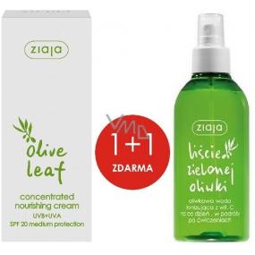 Ziaja Olivové listy SPF 20 vyživujúci koncentrovaný krém 50 ml + Olivové listy s vitamínom C tonizujúci voda 200 ml, duopack