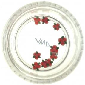 Professional Ozdoby na nechty kvetina červené so zeleným 132