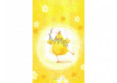Nekupto Veľkonočné sáčok kura 180 x 360 mm 005 01 NVE