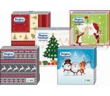 Regina Vianočné papierové obrúsky Svetlozelené, Santa 1 vrstvové 33 x 33 cm 20 kusov
