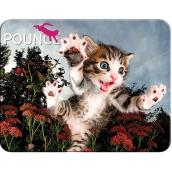 Prime3D pohlednice - Kotě 16 x 12 cm