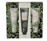 Heathcote & Ivory Tender Palm vyživujúci krém na ruky a nechty 3 x 30 ml kozmetická sada