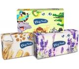 Big Soft Deluxe papierové vreckovky 2 vrstvové v krabičke 100 kusov