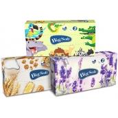 Big Soft Deluxe papírové kapesníky 2 vrstvé v krabičce 100 kusů