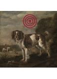 Bohemia Gifts Dekoračné obraz na zavesenie Terč pes 30 x 30 cm