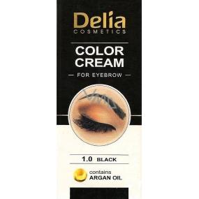 Delia Cosmetics Color Cream farbiace krém na obočie s arganovým olejom 1.0 Black 15 ml + 15 ml