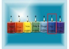 Lima Čakra frézie vonná sviečka modrá valec 50 x 65 mm 120 g