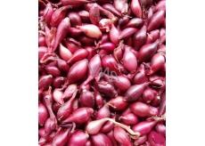 Karmen, Sazečka cibule červená 20 kg