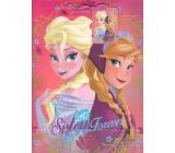 Ditipo Disney Dárková papírová taška pro děti L Elsa a Anna, Sisters Forever 26,4 x 12 x 32,4 cm
