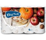 Big Soft Jeseň papierové kuchynské utierky s potlačou 2 vrstvové 4 kusy