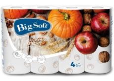 Big Soft Podzim papírové kuchyňské utěrky s potiskem 2 vrstvé 4 kusy